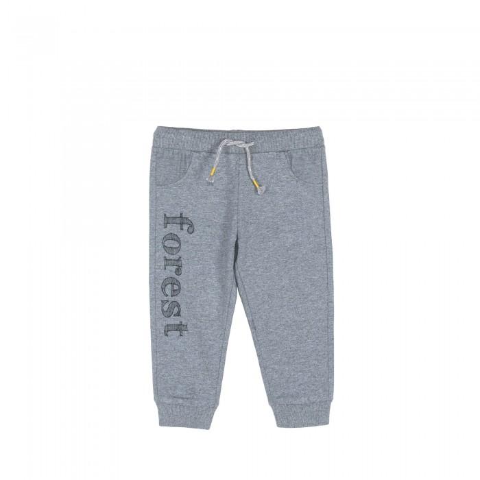 Брюки, джинсы и штанишки Coccodrillo Штанишки для мальчика Forest, Брюки, джинсы и штанишки - артикул:594414