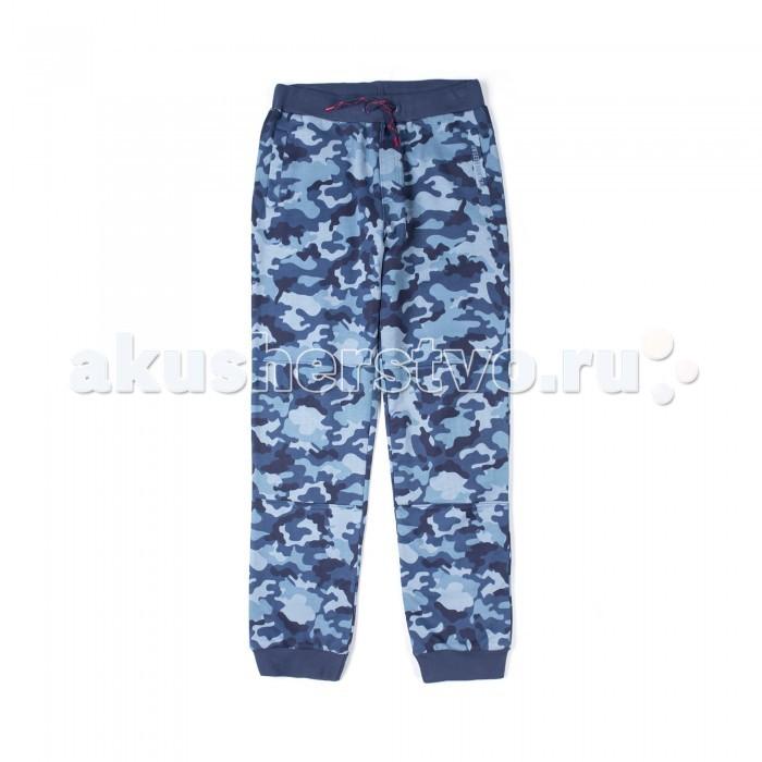 Детская одежда , Брюки, джинсы и штанишки Coccodrillo Штанишки для мальчика Japan Forever арт: 519206 -  Брюки, джинсы и штанишки