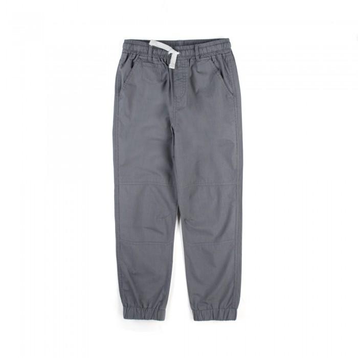 Детская одежда , Брюки, джинсы и штанишки Coccodrillo Штанишки Wild One арт: 516536 -  Брюки, джинсы и штанишки