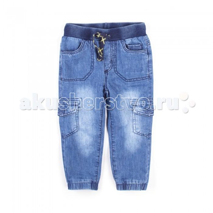 Детская одежда , Брюки, джинсы и штанишки Coccodrillo Штанишки Yellow Submarine арт: 516561 -  Брюки, джинсы и штанишки