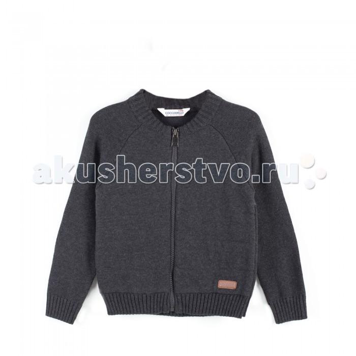Детская одежда , Джемперы, свитера, пуловеры Coccodrillo Свитер для мальчика Boo арт: 399529 -  Джемперы, свитера, пуловеры
