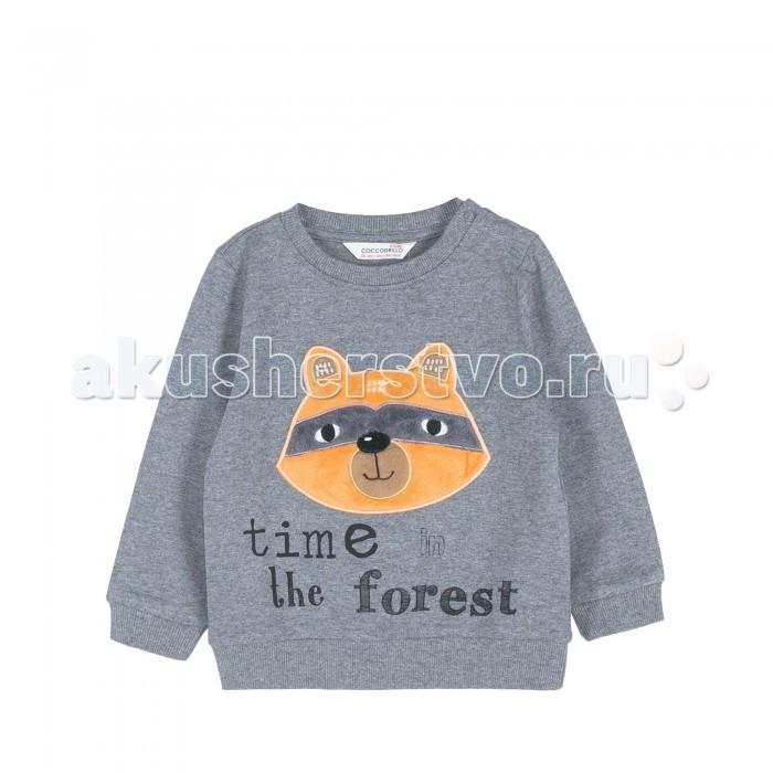 Толстовки, свитшоты, худи Coccodrillo Свитшот для мальчика Forest, Толстовки, свитшоты, худи - артикул:594409