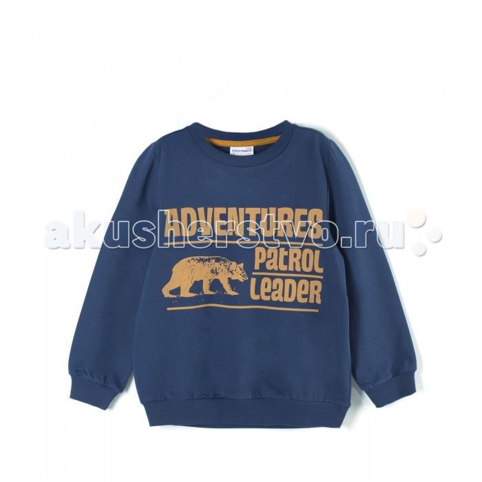 Детская одежда , Толстовки, свитшоты, худи Coccodrillo Свитшот для мальчика Nordic Expedition арт: 408039 -  Толстовки, свитшоты, худи