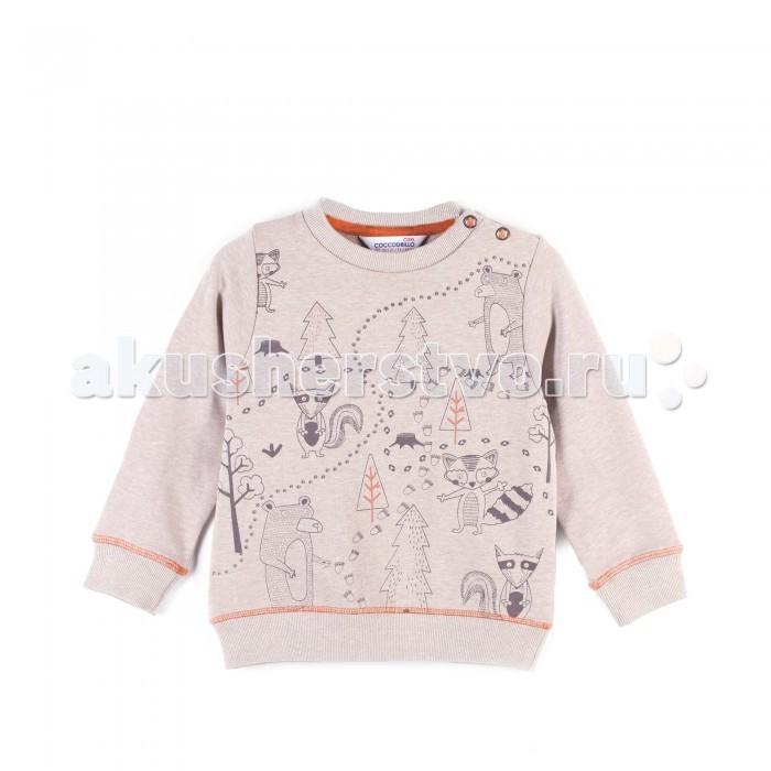 Детская одежда , Толстовки, свитшоты, худи Coccodrillo Свитшот для мальчика Scent арт: 402509 -  Толстовки, свитшоты, худи