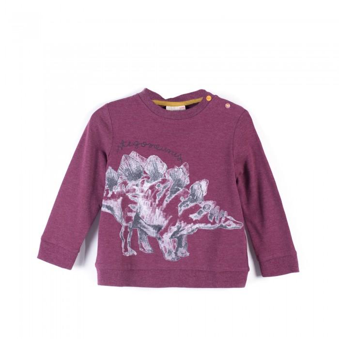 Детская одежда , Толстовки, свитшоты, худи Coccodrillo Свитшот для мальчика Stegosaurus арт: 403264 -  Толстовки, свитшоты, худи