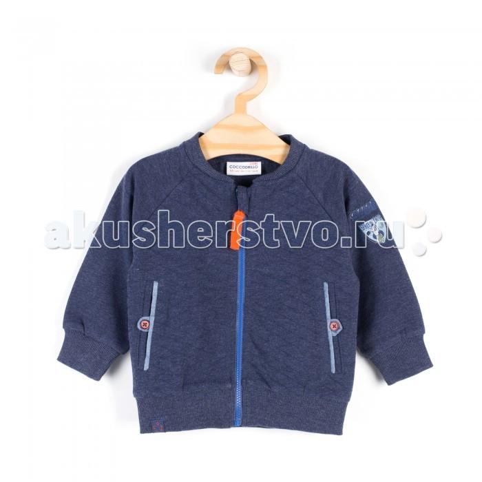 Детская одежда , Толстовки, свитшоты, худи Coccodrillo Толстовка для мальчика Catronauta арт: 408529 -  Толстовки, свитшоты, худи