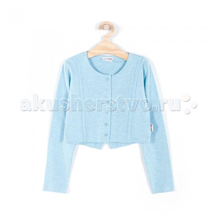 Детская одежда , Пиджаки, жакеты, жилетки Coccodrillo Жакет для девочки Delicious Apple арт: 333775 -  Пиджаки, жакеты, жилетки
