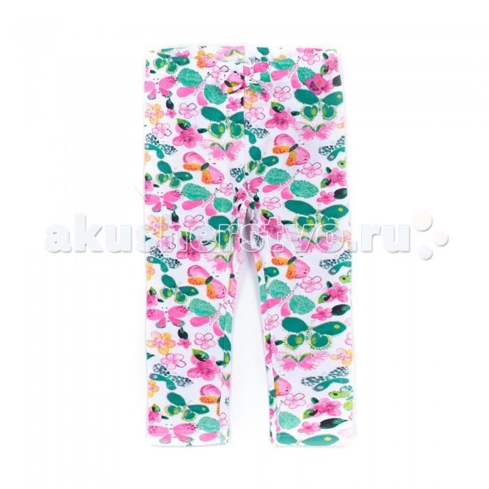 Брюки, джинсы и штанишки Coccodrillo Леггинсы для девочки Butterfly брюки джинсы и штанишки coccodrillo брюки для девочки horses