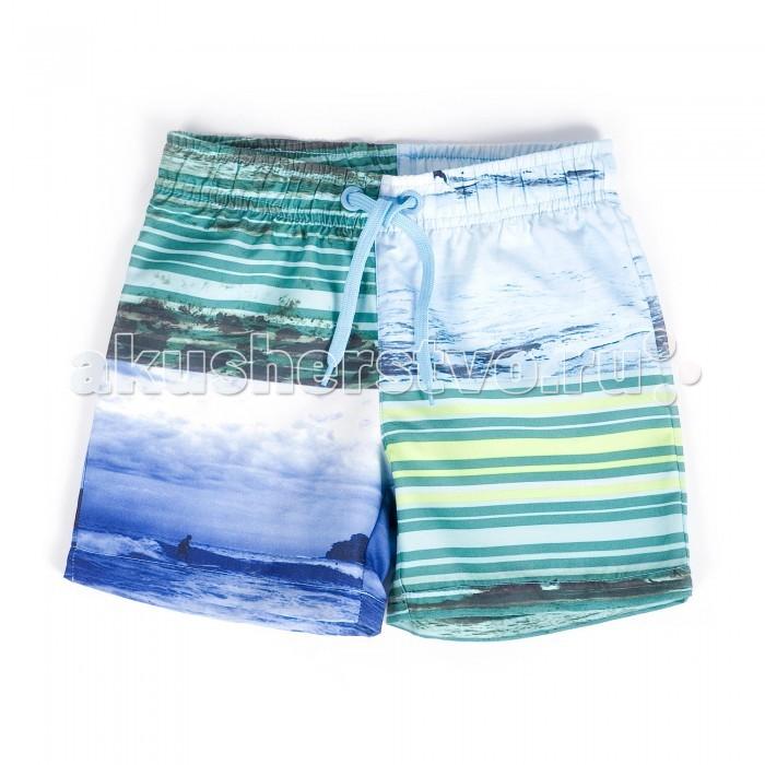 Детская одежда , Купальники и плавки Coccodrillo Плавки для мальчика Swiming Costume арт: 334265 -  Купальники и плавки