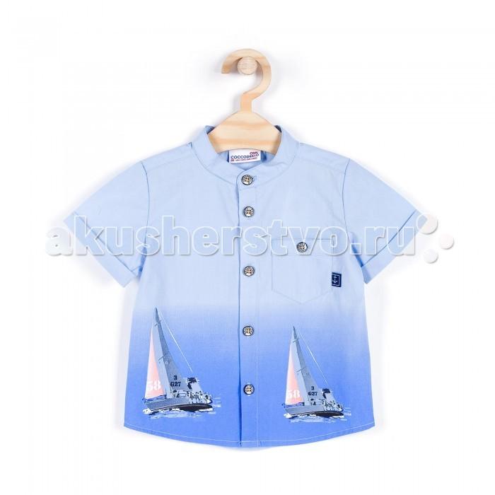 Детская одежда , Блузки и рубашки Coccodrillo Рубашка для мальчика Little Sailor арт: 329945 -  Блузки и рубашки
