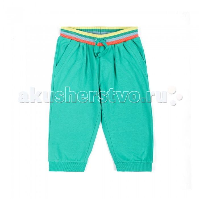 Детская одежда , Шорты и бриджи Coccodrillo Шорты для девочки Sunny Fruits арт: 327274 -  Шорты и бриджи