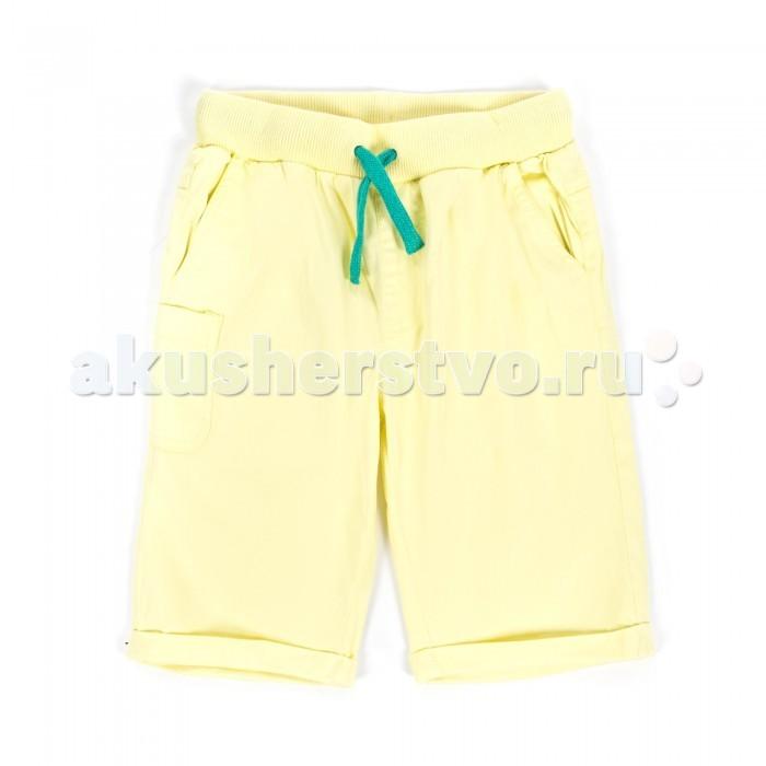 Детская одежда , Шорты и бриджи Coccodrillo Шорты для мальчика California арт: 328384 -  Шорты и бриджи