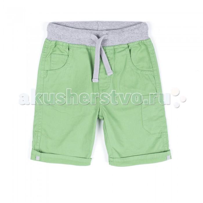 Детская одежда , Шорты и бриджи Coccodrillo Шорты для мальчика Easy Dude арт: 328413 -  Шорты и бриджи