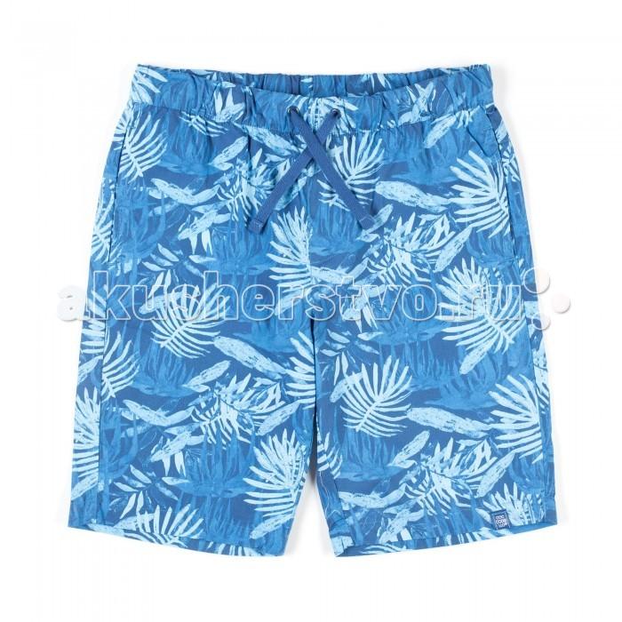Детская одежда , Шорты и бриджи Coccodrillo Шорты для мальчика Hello Summer арт: 334490 -  Шорты и бриджи