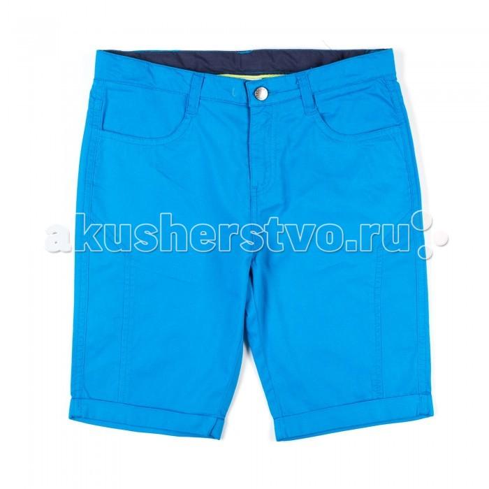 Детская одежда , Шорты и бриджи Coccodrillo Шорты для мальчика однотонные Hello Summer арт: 334570 -  Шорты и бриджи