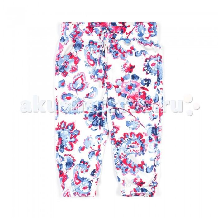 Брюки, джинсы и штанишки Coccodrillo Штанишки для девочки Breeze брюки джинсы и штанишки coccodrillo брюки для девочки horses