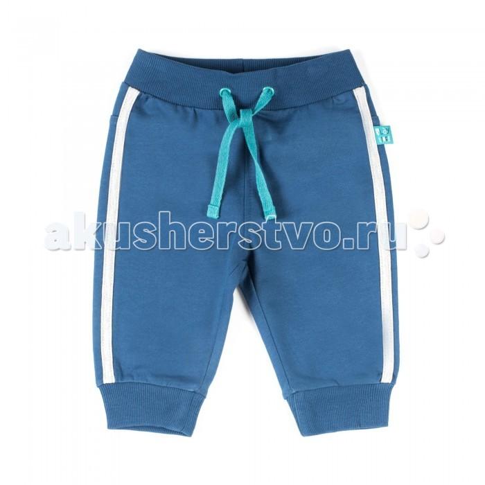Брюки, джинсы и штанишки Coccodrillo Штанишки спортивные Play Time брюки котмаркот штанишки звездное небо