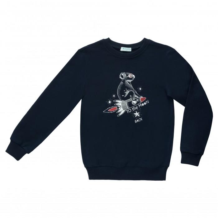 Купить Толстовки и свитшоты, Diva Kids Джемпер для мальчика Космос DK-094
