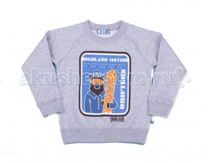 Толстовки, свитшоты, худи Free Age Джемпер Мальчик на Севере ZB 09195-M