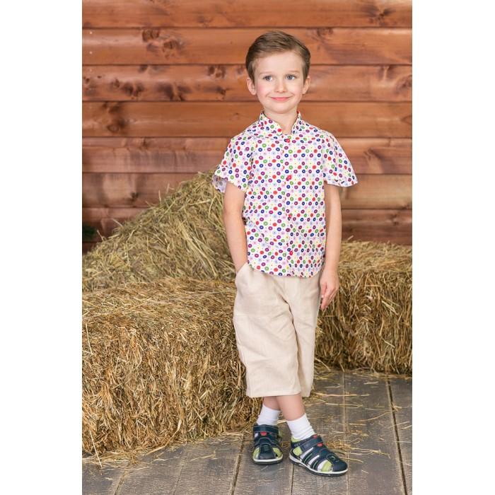 Рубашки Frizzzy Рубашка детская Калейдоскоп пуговиц