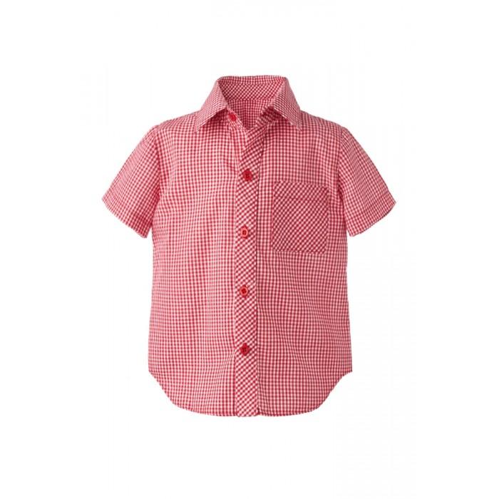 Блузки и рубашки Goldy Рубашка для мальчика 872.114.581