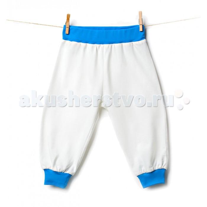 Брюки, джинсы и штанишки Goldy Штанишки ясельные 623.033.181 goldy белый с голубыми манжетами