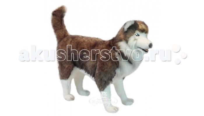 Мягкие игрушки Hansa Хаски 75 см мягкие игрушки hansa собака породы сибирский хаски 40 см