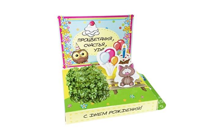 Наборы для выращивания Happy Plant Подарочный набор С Днём рождения! наборы для выращивания happy plant детский набор для выращивания зоопарк