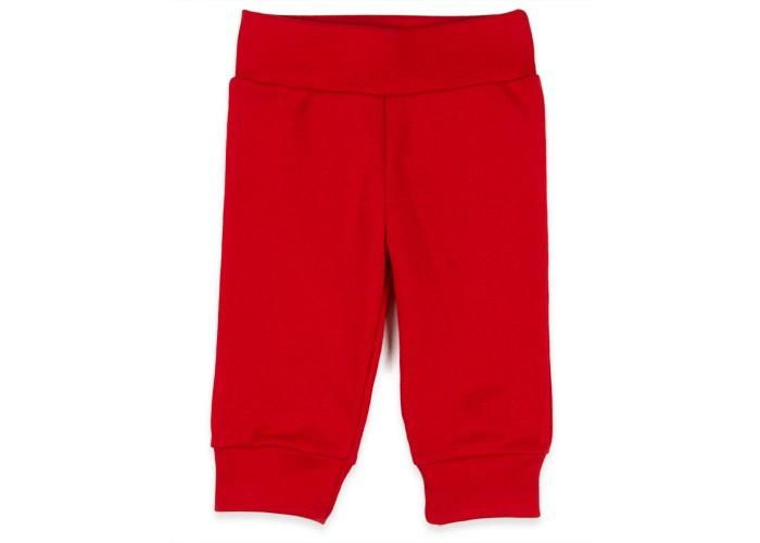 Брюки, джинсы и штанишки Idea Kids Штанишки Hot safari