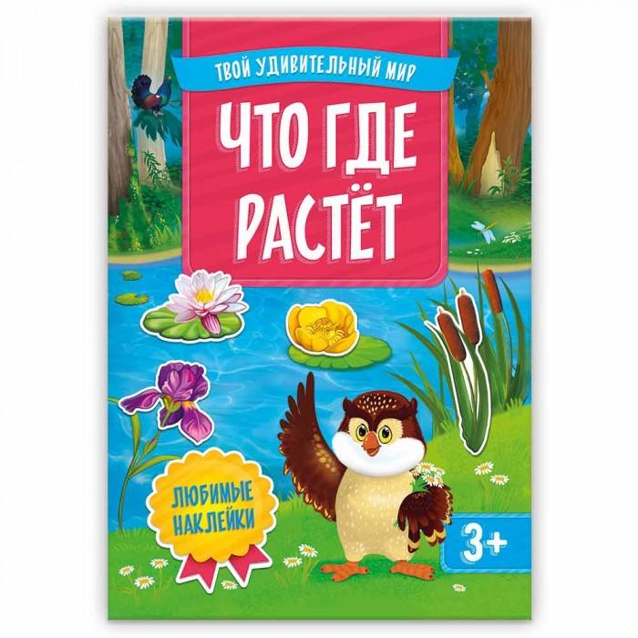 Картинка для Книжки с наклейками Геодом Книжка с наклейками Твой удивительный мир Что где растет