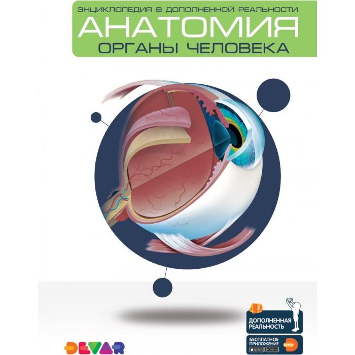 Энциклопедии Devar Kids Энциклопедия в дополненной реальности 4D Анатомия: Органы человека