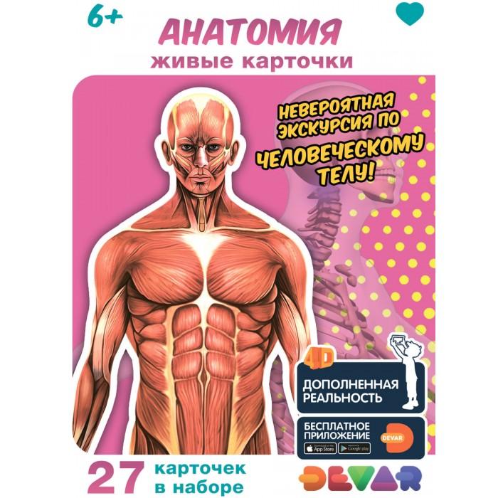 Обучающие книги Devar Kids Живые карточки 4D: Анатомия
