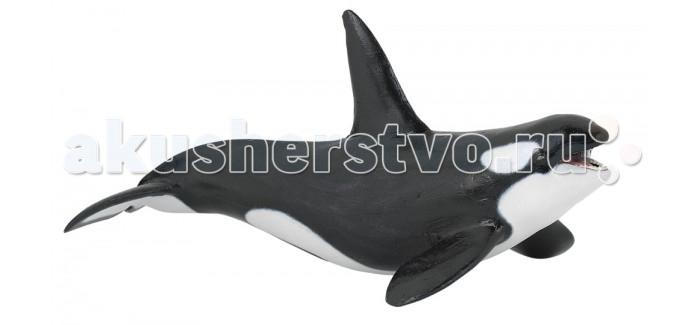 Papo Игровая реалистичная фигурка Белая акула