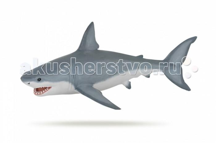 Игровые фигурки Papo Игровая реалистичная фигурка Белая акула