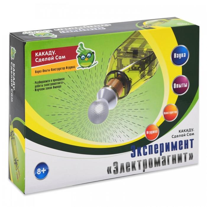 Наборы для опытов и экспериментов Kakadu Сделай сам Набор эксперимент Электромагнит