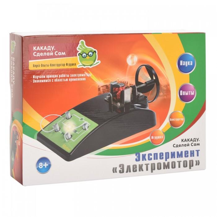 Купить Наборы для опытов и экспериментов, Kakadu Сделай сам Набор эксперимент Электромотор