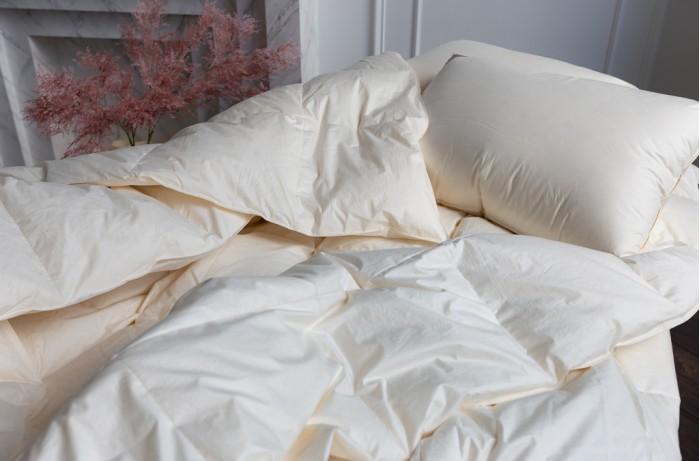 Купить Одеяла, Одеяло German Grass пуховое кассетное Organic Down всесезонное 200х220 см