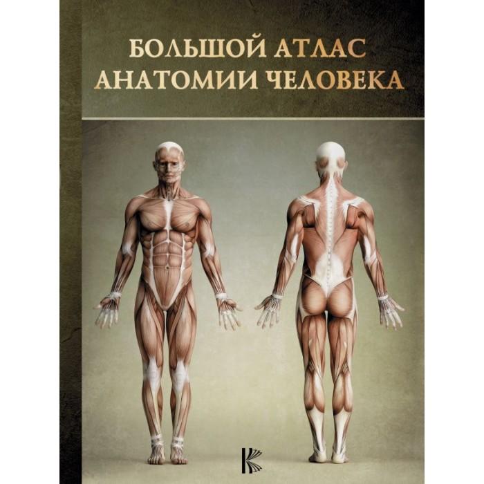 Атласы и карты Издательство АСТ Большой атлас анатомии человека недорого