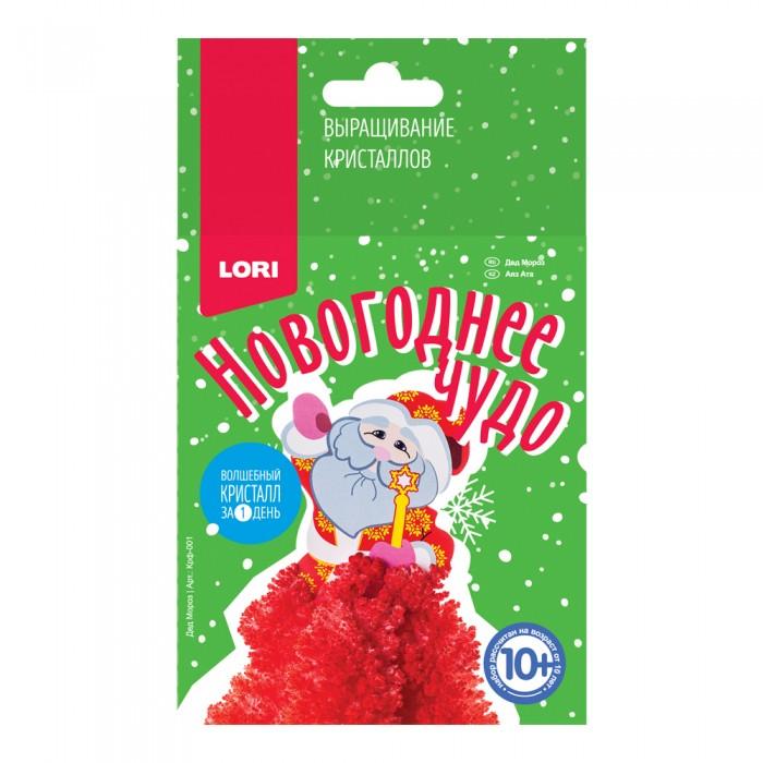 Наборы для выращивания Lori Выращивание кристаллов Дед Мороз
