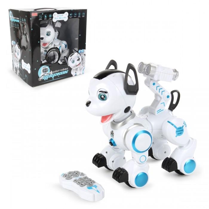 Veld CO Робот-собака радиоуправляемый