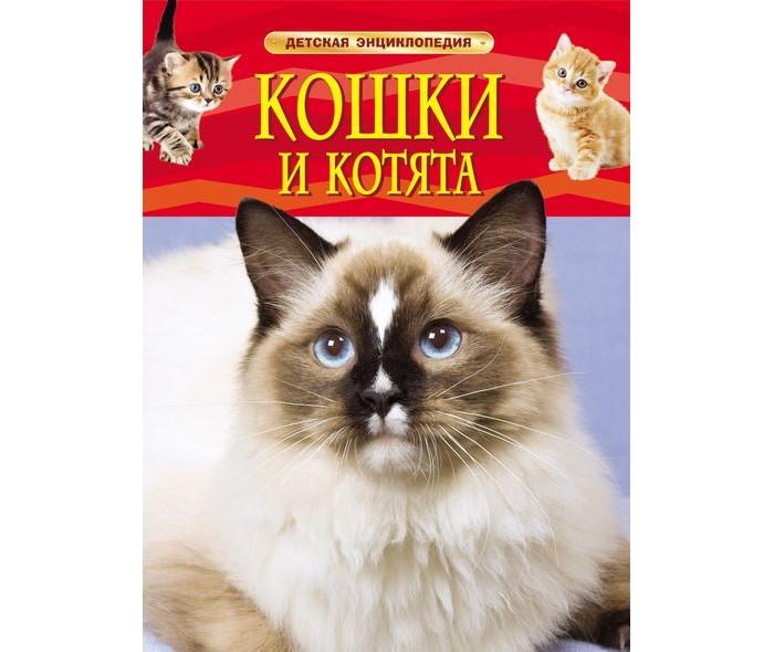 Купить Росмэн Энциклопедия Кошки и котята в интернет магазине. Цены, фото, описания, характеристики, отзывы, обзоры