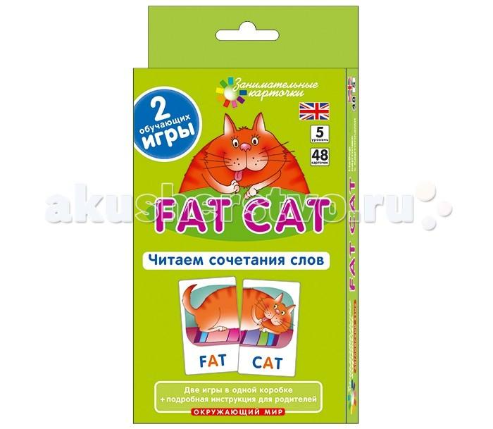 Раннее развитие Айрис-пресс Англ5. Толстый кот (Fat Cat). Читаем сочетания слов. Level 5.  Набор карточек раннее развитие айрис пресс матем 5 друзья сравнение величин набор карточек