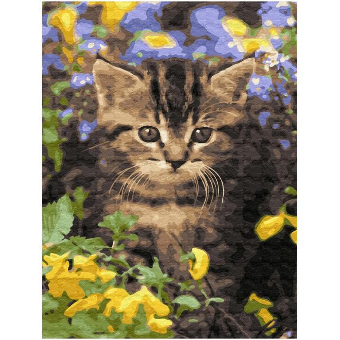 Картины по номерам Molly Картина по номерам с цветной схемой на холсте Новые ароматы 40х30 см