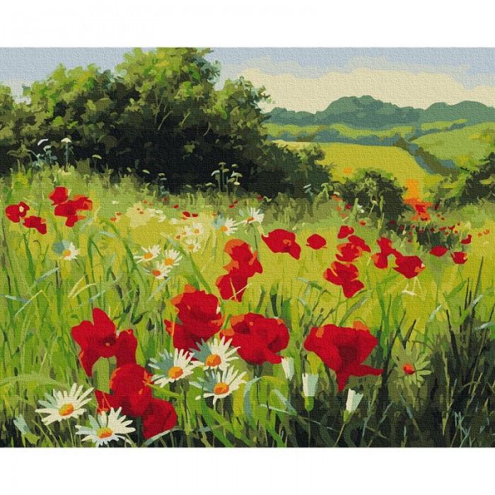 Картины по номерам Molly Картина по номерам Луговые цветы 40х50 см