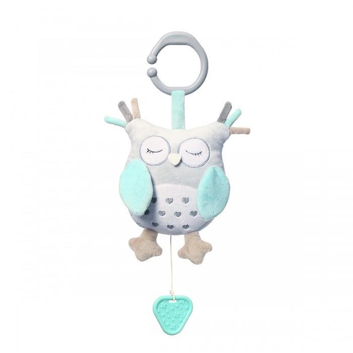 Купить Подвесные игрушки, Подвесная игрушка BabyOno музыкальная Сова Sofia