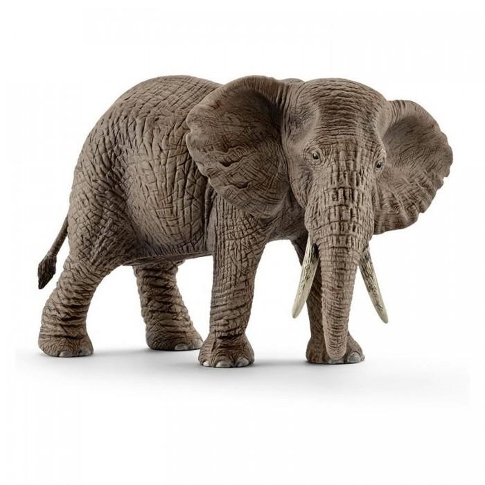 Купить Игровые фигурки, Schleich Фигурка Африканский слон самка