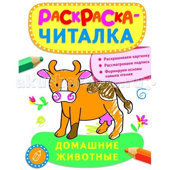 Раннее развитие Росмэн Раскраска-читалка Домашние животные беляева т и отв ред раскраска читалка игрушки