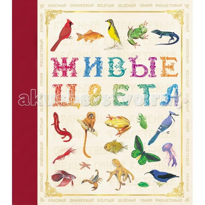Обучающие книги Росмэн Живые цвета обучающие книги росмэн книга супертехника