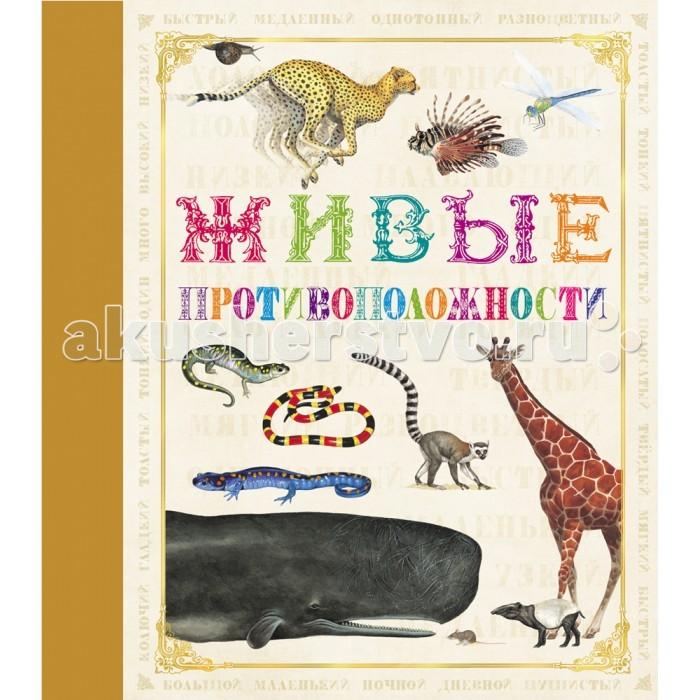 Обучающие книги Росмэн Живые противоположности книжки картонки росмэн книга противоположности