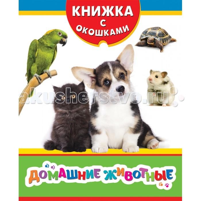 Книжки-картонки Росмэн Книжка Домашние животные мельник в домашние животные и их детеныши page 3